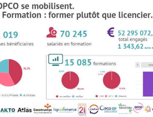 FNE- Formation : les OPCO mobilisés — CPFormation